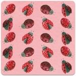 Podložka Ladybirds 10*10 cm