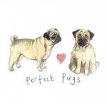 Přání Pugs