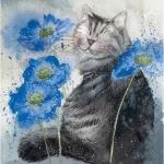 Obrázek Cornflowers