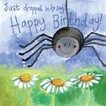 Přání Little spider
