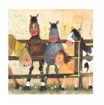 Obrázek Pony club