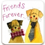 Magnetka Friends forever