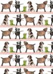Balicí papír set 2+2 - Country dogs