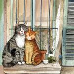 Přání Provence cats