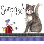 Přání Surprise!