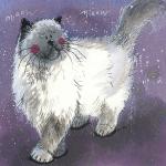 Obrázek Fluffy Felix