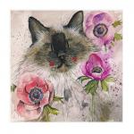 Přání Cat in the anenomes